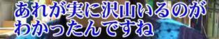 ☆sakuraraボード☆-T31
