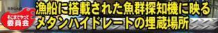 ☆sakuraraボード☆-T33