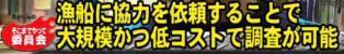 ☆sakuraraボード☆-T34