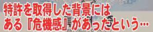 ☆sakuraraボード☆-T36
