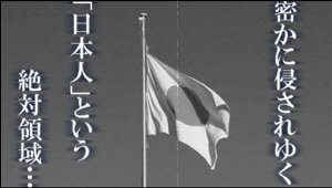 ☆sakuraraボード☆-t3