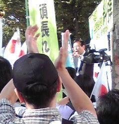 sakuraraボード-10.2渋谷10