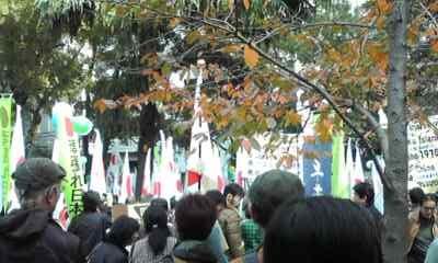 sakuraraボード-11.20大阪デモ_1