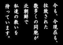 sakuraraボード-拉致12