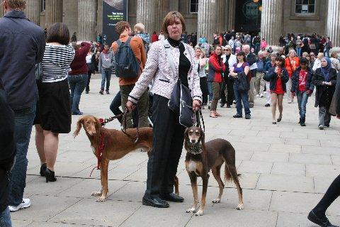 IMG_2395犬