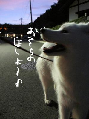 006_20120831223220.jpg