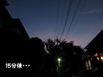 008_20120831223418.jpg