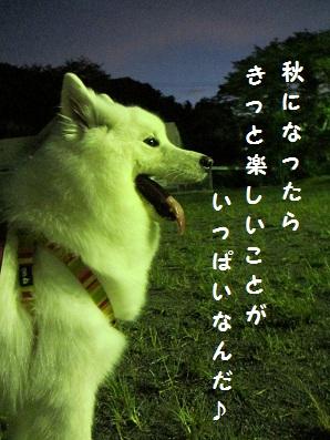 020_20120831224552.jpg