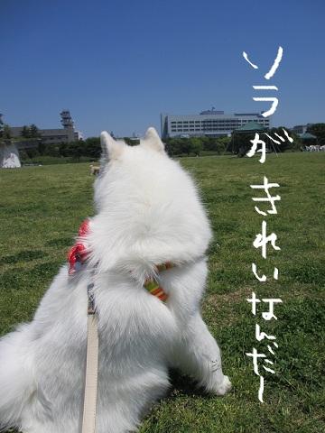 2012もん 052 (2)