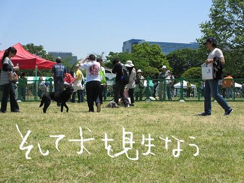 2012もん 062 (2)
