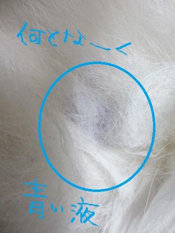 2012もん 025