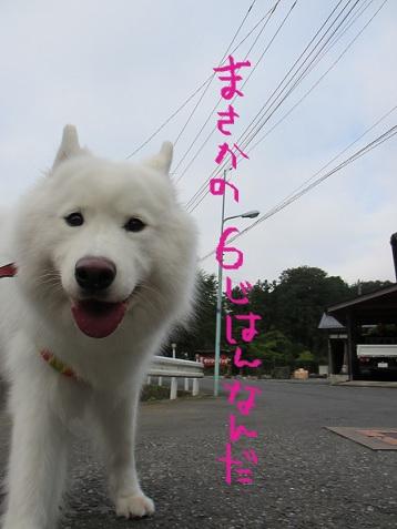 2012もん 001