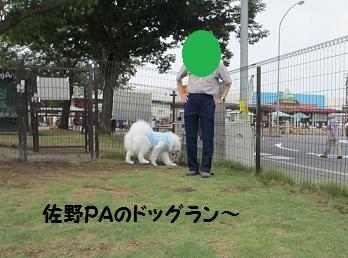 2012もん 004