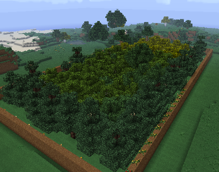 Minecraft 21