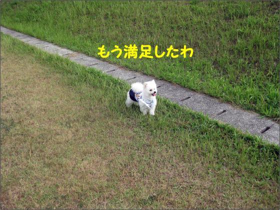 IMG_1918_convert_20120611211302.jpg