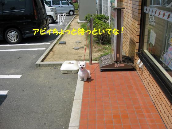 IMG_2207_convert_20120712222639.jpg