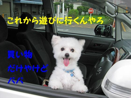 IMG_2331_convert_20120727005923.jpg