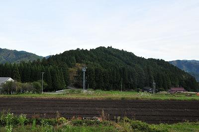 DSC_9651.jpg