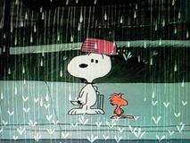 スヌーピーの大冒険_Snoopy, Come Home (19)