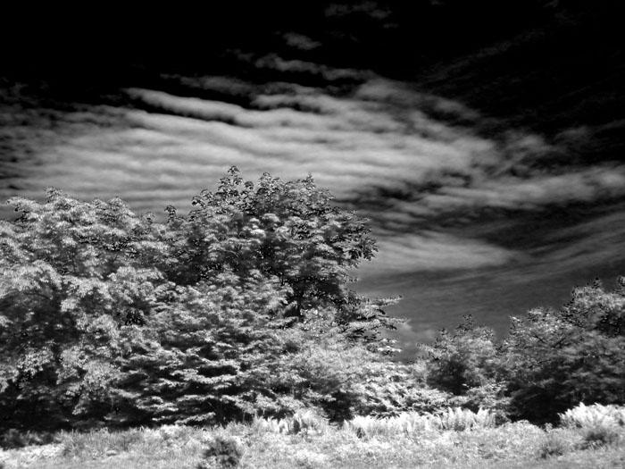 7雲(赤外線的ココロ)