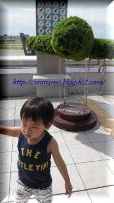 DCIM3112.jpg