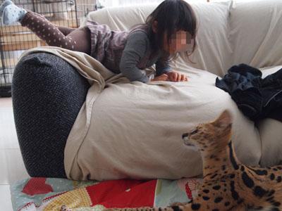 チャオと娘5