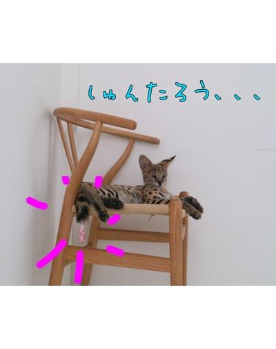 fc2blog_20120905182908d96.jpg