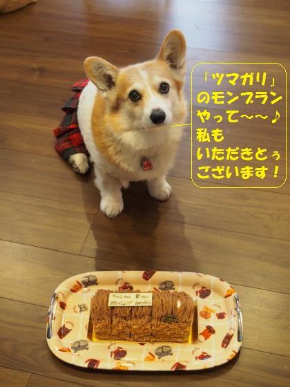つまがりのケーキと