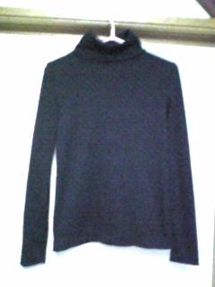 黒のタートル(100122)