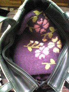 鞄の中に嵩張る物(100126)_04