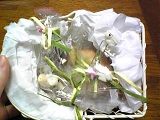 カウプレぽんのすけさん(100528)_03
