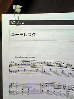 カウプレぽんのすけさん(100528)_06