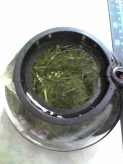 100623_スギナ茶