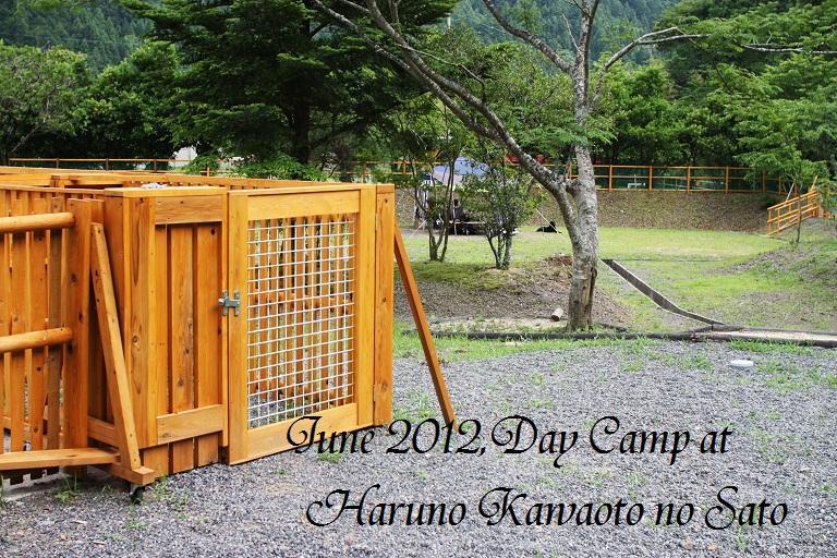 IMG_0127Haruno June 3