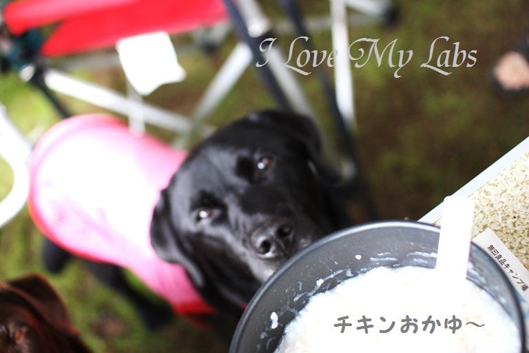 IMG_8851Kitakaruizawa July 2012