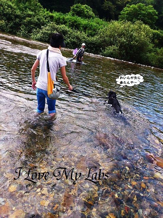 DSC_2938 (2)Itadori River