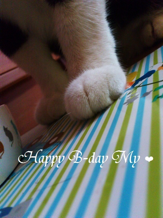 DSC_3776 (2)My Birthday