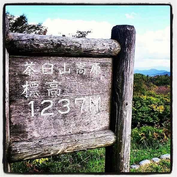 IMG_20121020_220533 (2)Chausuyama
