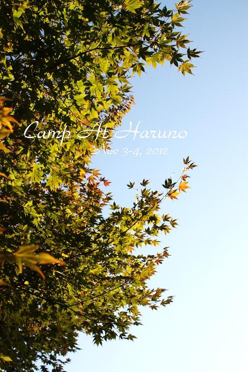 IMG_9967 (2)Haruna Nov 2012