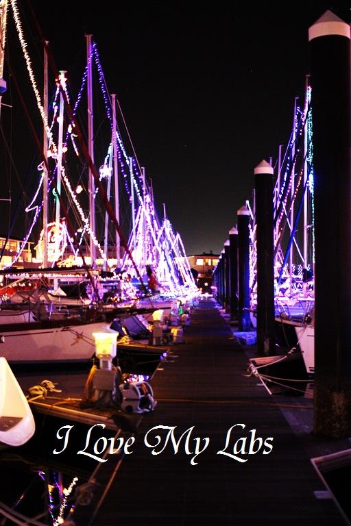 IMG_0074 (2)Laguna 2012
