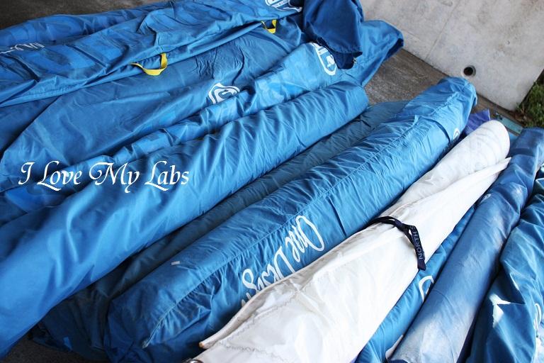 IMG_0369 (2)Aburatsubo Dec 2012