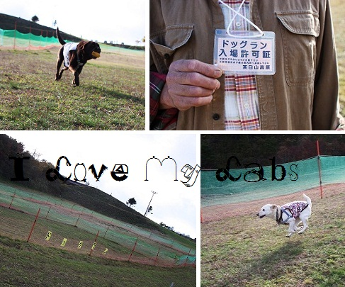 IMG_9806Chausuyama.jpg