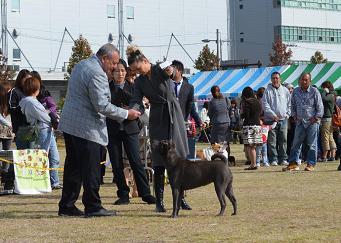 コピー ~ KARMA      11.04.2012     MAISHIMA (2)