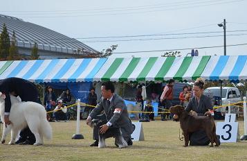 コピー ~ URSO      11.04.2012     MAISHIMA (9)