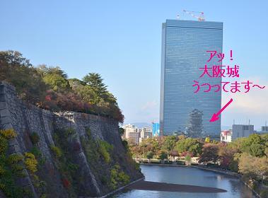 シャーペイ大阪城