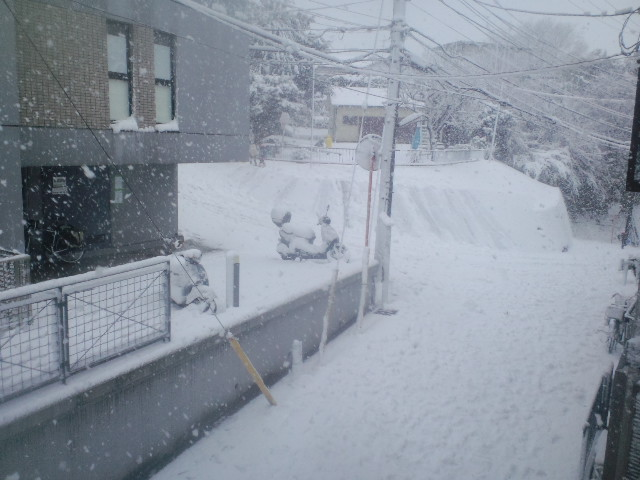2013年1月14日横浜の初雪