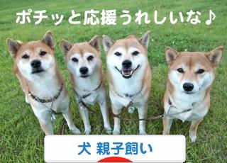 1_20120917182351.jpg