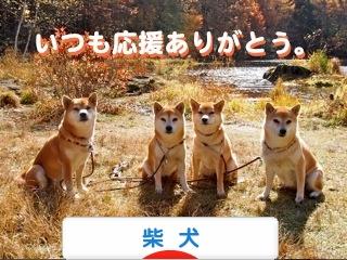 2_20121108222037.jpg