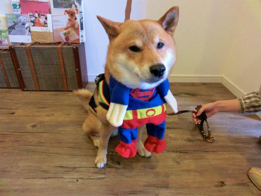 スーパーマン・マックス