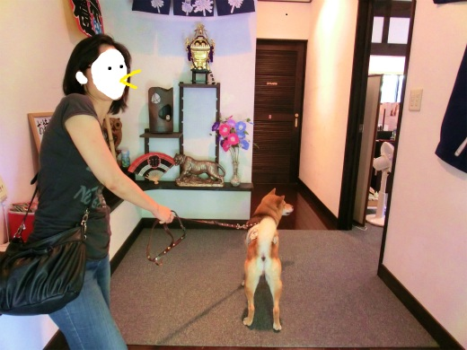 犬は土足、人間土禁
